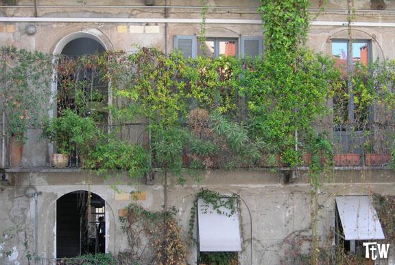 Galleria Carla Sozzani Milano