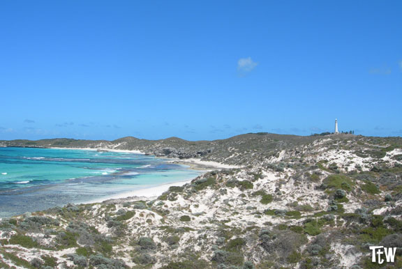 Rottnest Island - Australia Occidentale