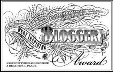 Very Inspiring Blogger Award 2013: i blog che vale la pena seguire (secondo me)