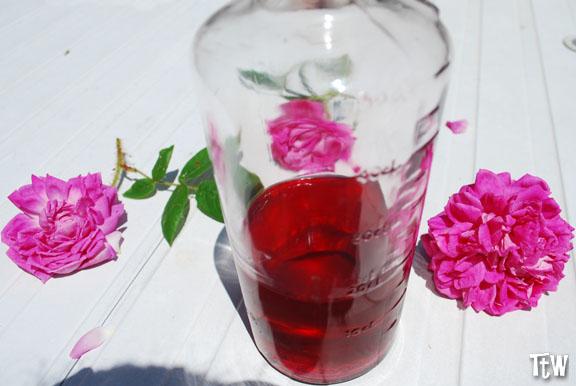 Sciroppo di Rose, Valle Scrivia