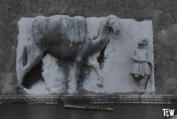 Casa del Cammello, Venezia