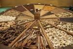 Museo Collezione Branca a Milano: in visita alla distilleria del Fernet