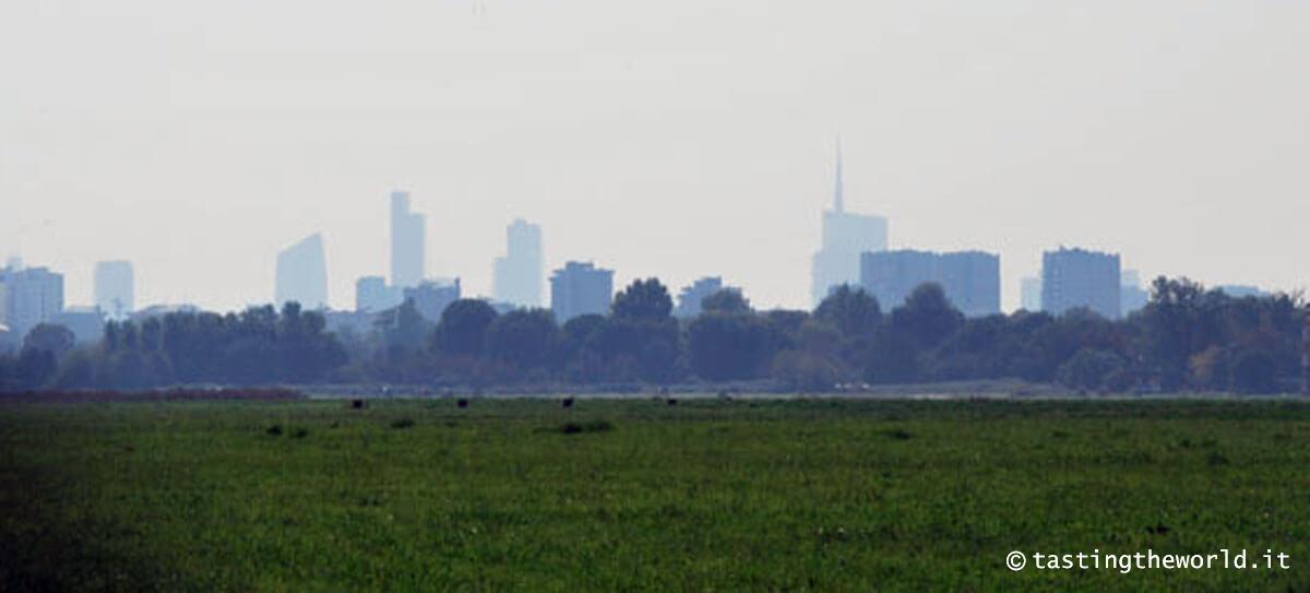 Skyline di Milano dal Parco Nord