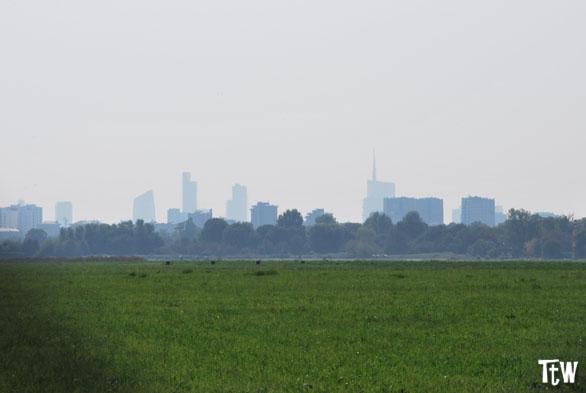 Lo skyline di Milano dal Parco Nord