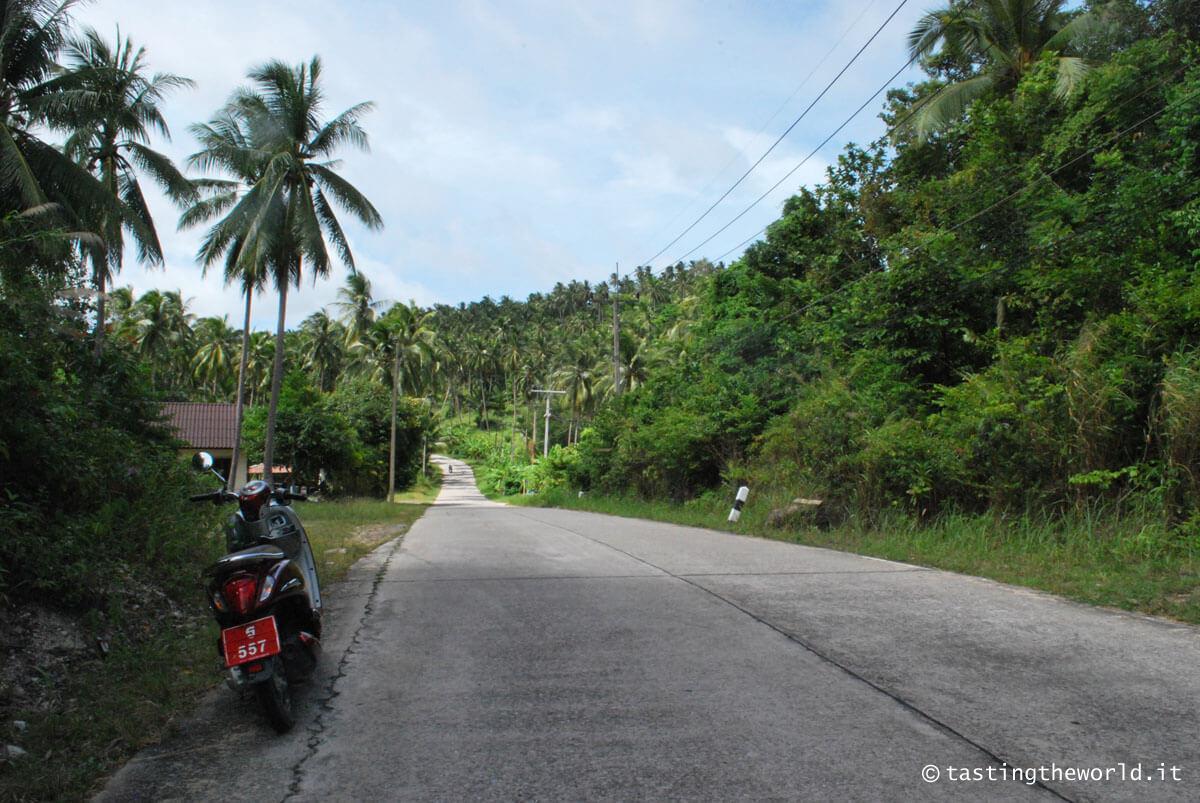 Ko Phangan in motorino