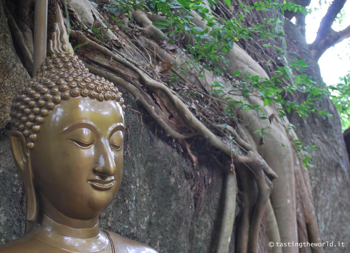 Ko Phangan, monasteri