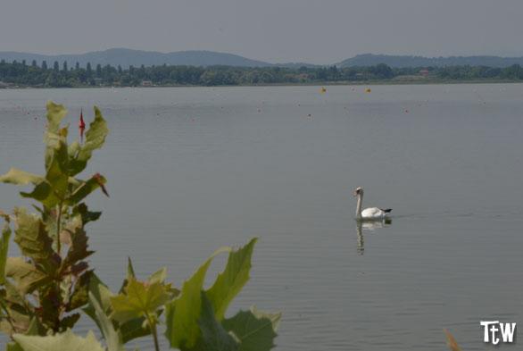 Cosa vedere sul Lago di Varese