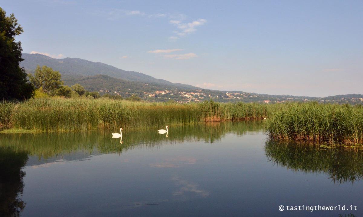 La pista ciclabile del Lago di Varese