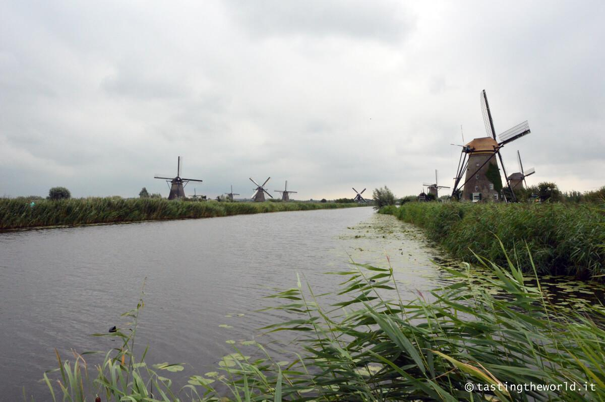 Kinderdijk, Olanda