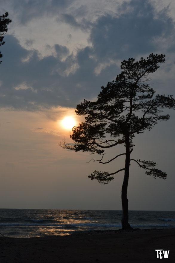 Lago Baikal, Siberia (Russia)