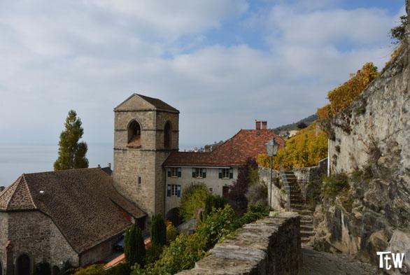 St Saphorin, Lavaux (Svizzera)