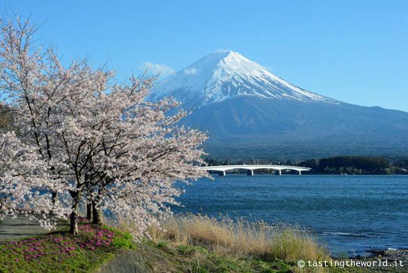Kawaguchiko (Giappone): vista sul monte Fuji