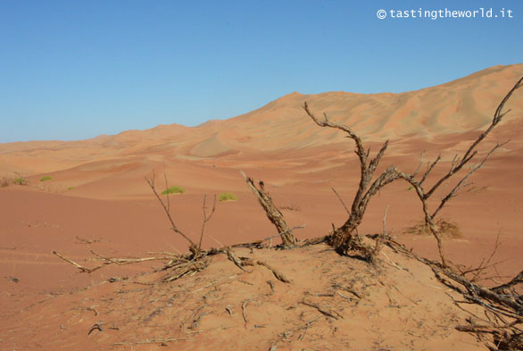 Quarto Vuoto (deserto), Oman