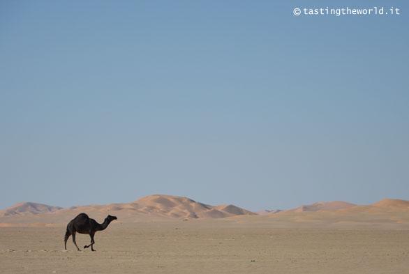 Oman fai da te