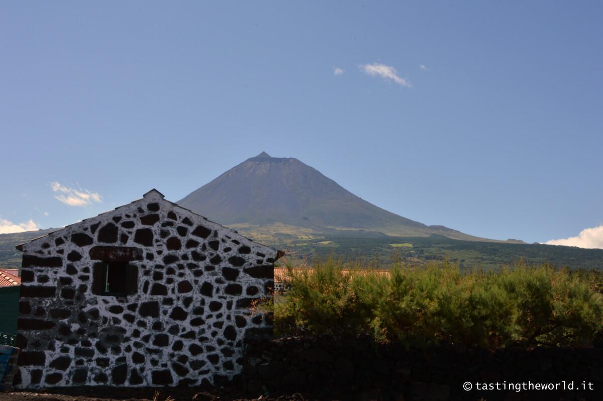 Abitazione tradizionale nella zona delle Adegas, Pico (Azzorre)