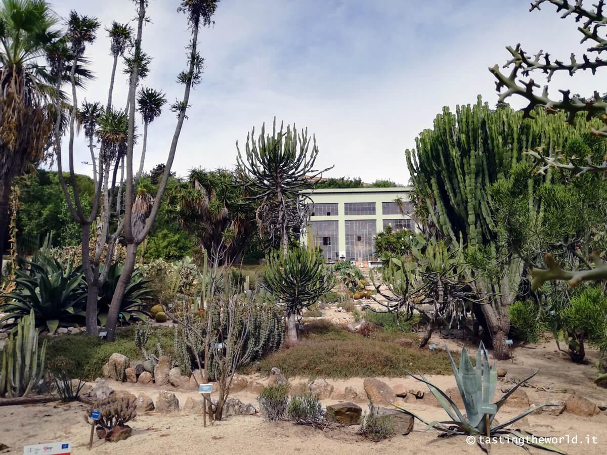 Orto Botanico di Cagliari