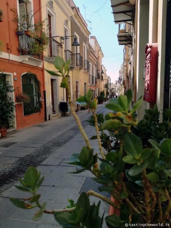 Villanova, Cagliari