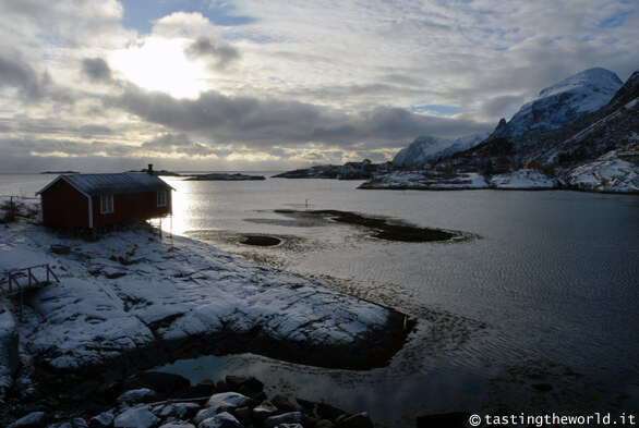 Un rorbuer solitario alle isole Lofoten
