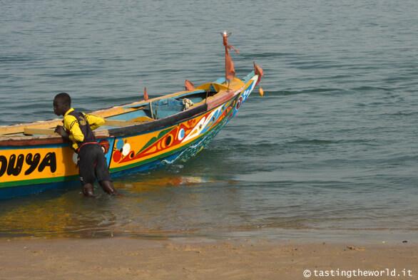 Piroga colorata, Senegal