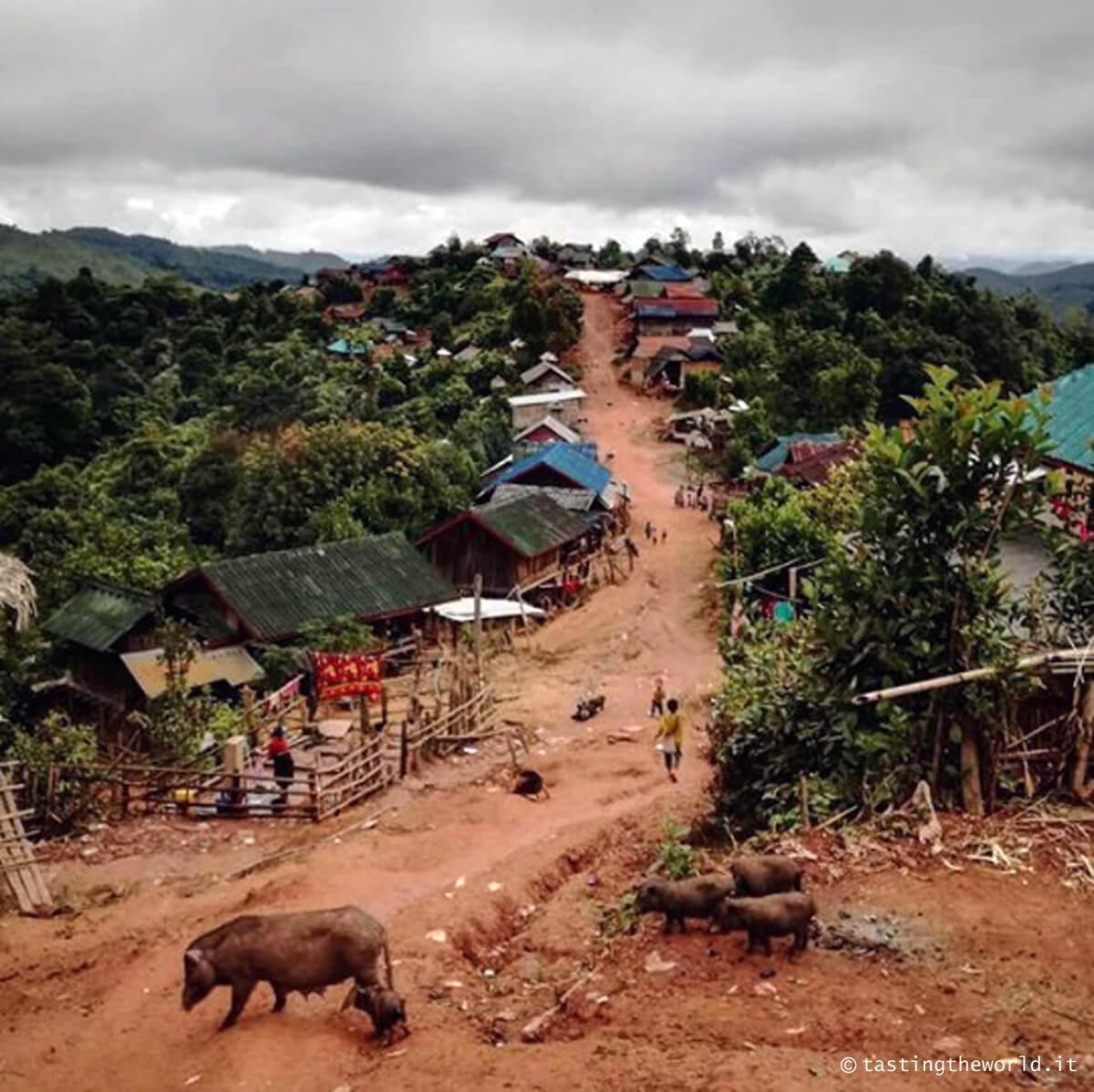Villaggio nell'Area Nazionale Protetta di Nam Ha, Laos