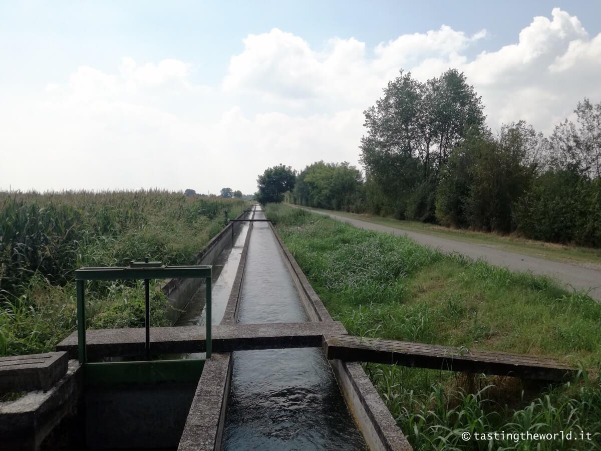 Ciclabile del Mincio: da Peschiera del Garda a Mantova in bici