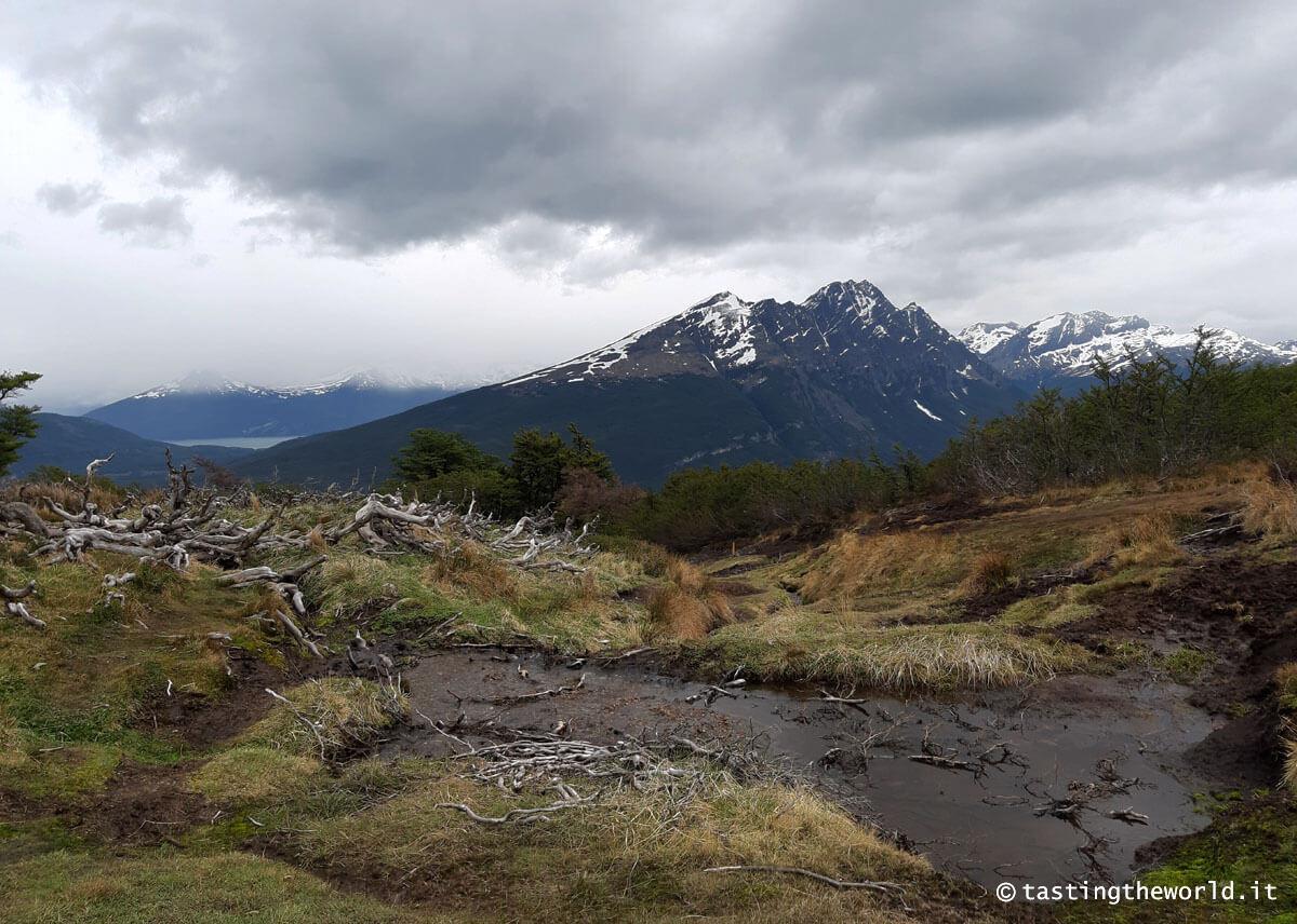 Parco Nazionale Terra del Fuoco, Ushuaia (Argentina)